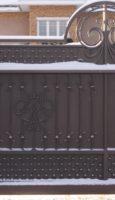 Ворота и калитка VIST